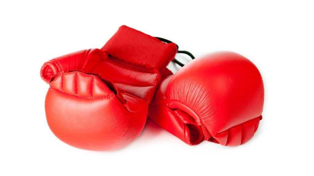 Kids Karate Gloves