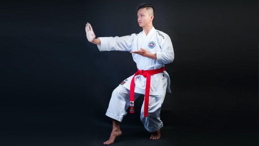 Karate Stances - Cat Stance - Neko Ashi Dachi