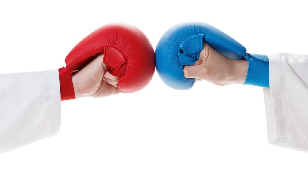 karate rules - Karate gloves