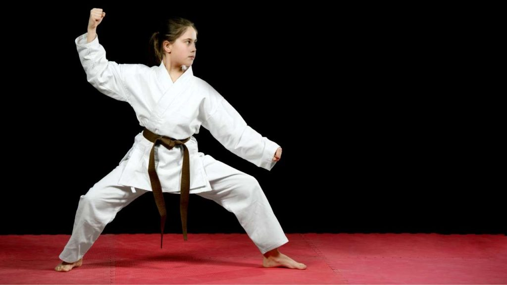 learn karate at home - karate stances