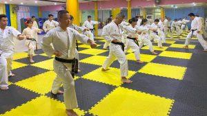 Best Martial Arts Floor Mats | The Karate Blog