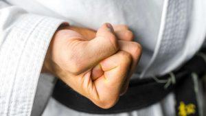The Twenty Guiding Principles Of Karate - Niju Kun