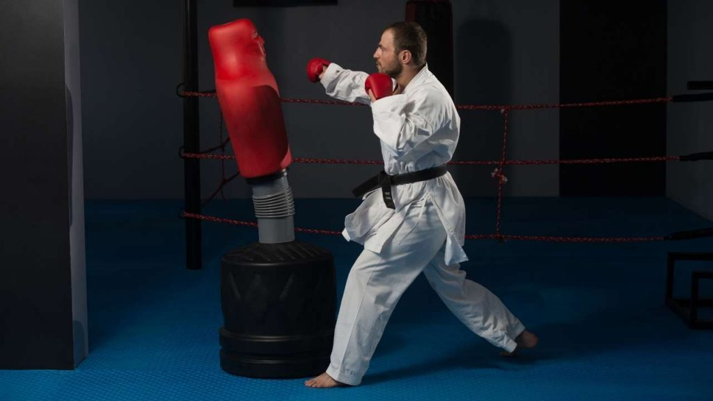 learn karate at home - Keep Karate Training Safe