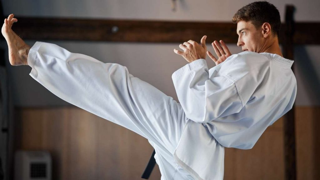 learn karate at home - karate kicks