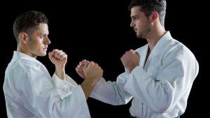 Shorin Ryu Karate, Shorin-Ryu Karate