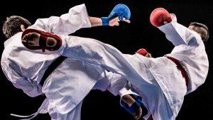 Shotokan VS Kyokushin