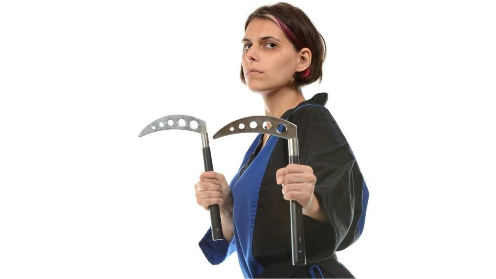 martial arts weapon - kama