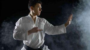 Shudokan Karate