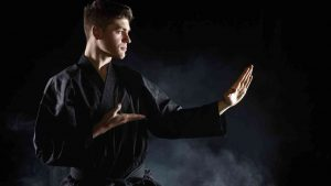 Shuri-Ryu, Shuri Ryu Karate